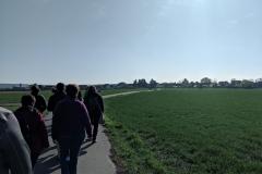 Gaensepfad-Wanderung-3